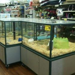 Pet,pet store,pet supplies plus,pet finder,pet rescue saga,pet supermarket,pet insurance,pet friendly hotels