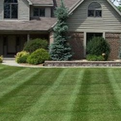 Photo Of Broccolo Tree Lawn Care Fairport Ny United States