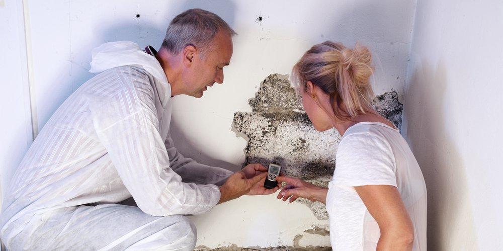 Pro Home Restorations: 407 Roberts Ave, Conshohocken, PA