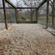 gruene barks and rec pet boarding 830 ewelling new braunfels rh yelp com