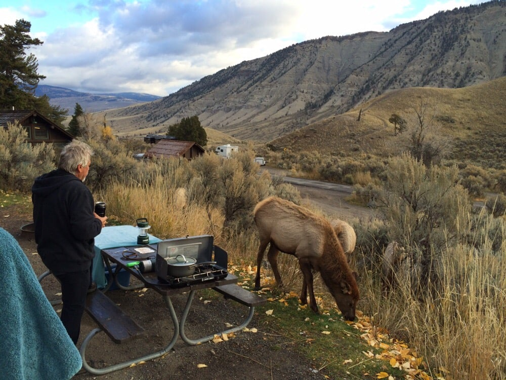 Mammoth Hot Springs Campground: Yellowstone National Park, WY