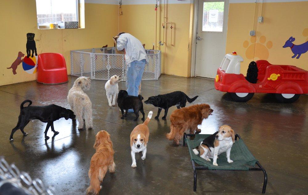 Paws & Pals Pet Resort: 5821 Industrial Ln SE, Prior Lake, MN