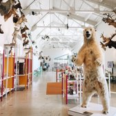 Natural History Museum Los Angeles Wedding Cost