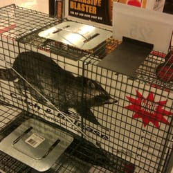 Tractor Supply - 11 Photos & 13 Reviews - Department Stores