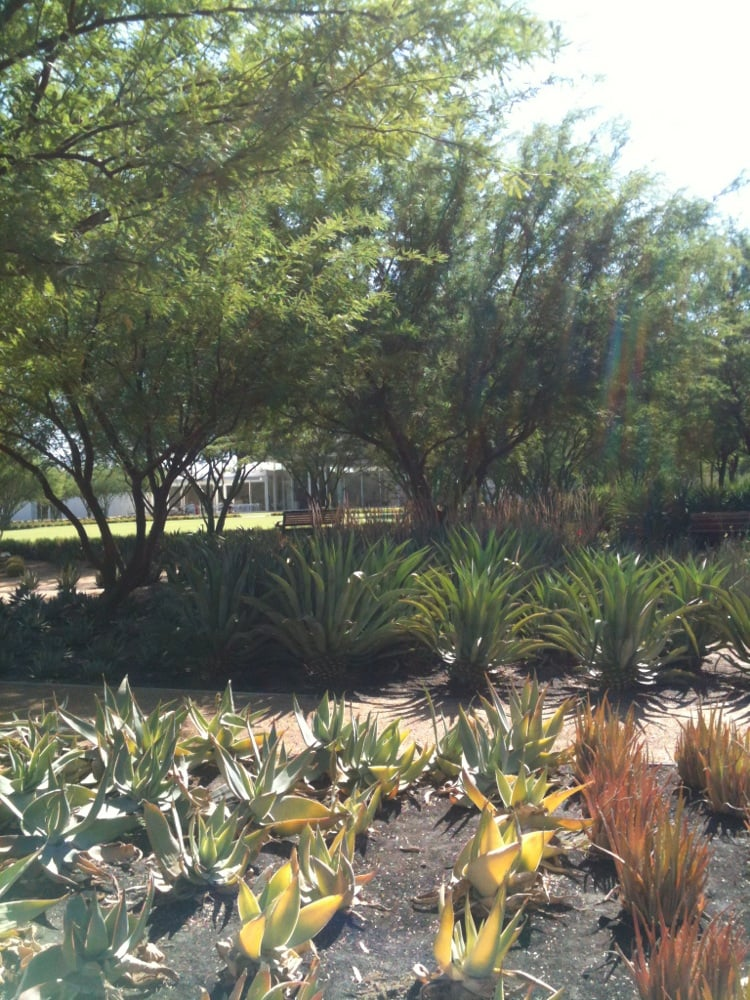 Photos For Sunnylands Center And Gardens Yelp