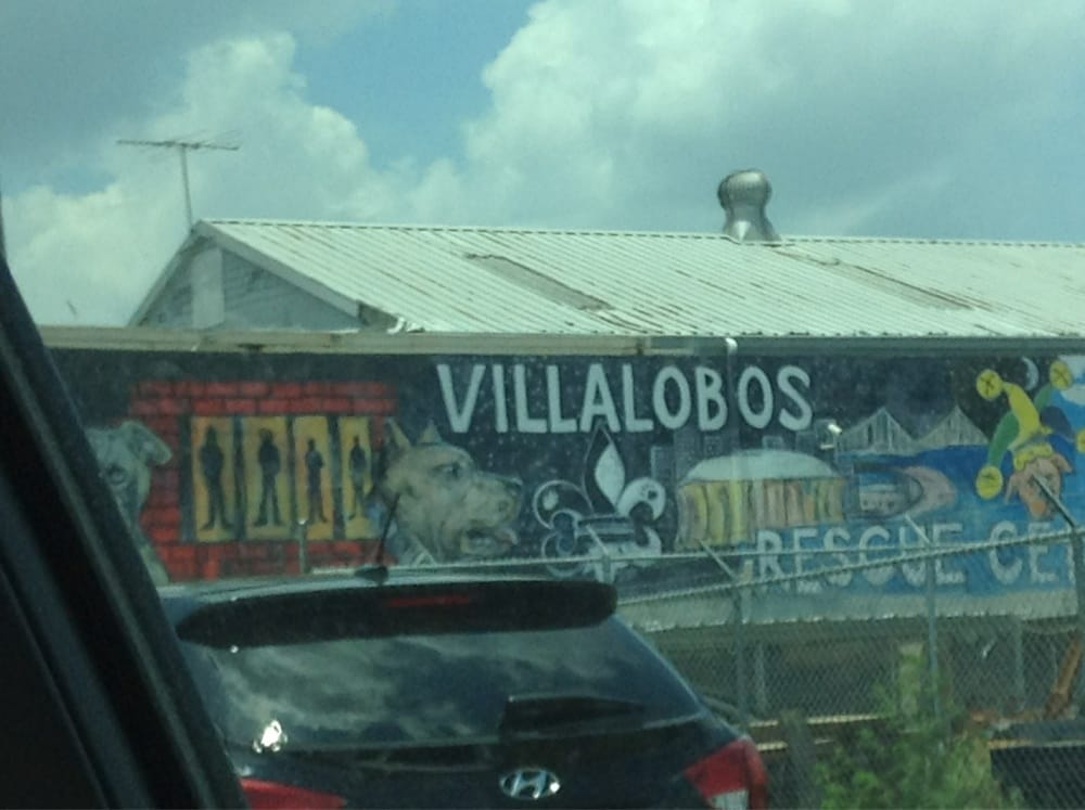 Photos For Villalobos Rescue Center Yelp