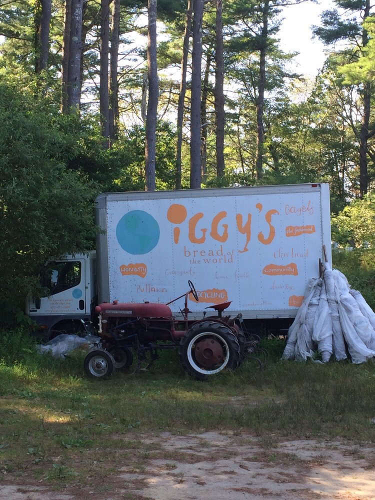 Bay End Farm Organic Produce: 200 Bourndedale Rd, Buzzards Bay, MA