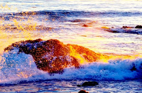 Eldwayen Ocean Park 300 2099 Ocean Blvd Pismo Beach Ca Parks