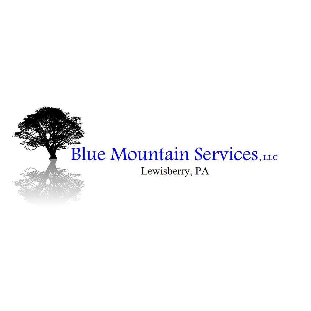 Blue Mountain Services: Lewisberry, PA