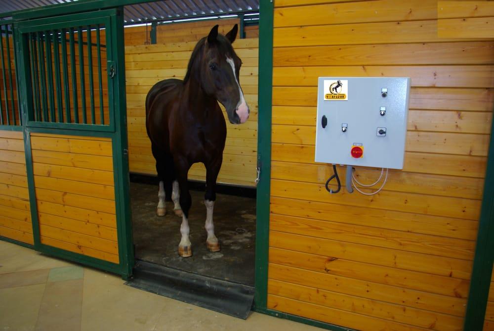 Dutch Dreamhorses: 148 B Dunbarton Rd, Aromas, CA