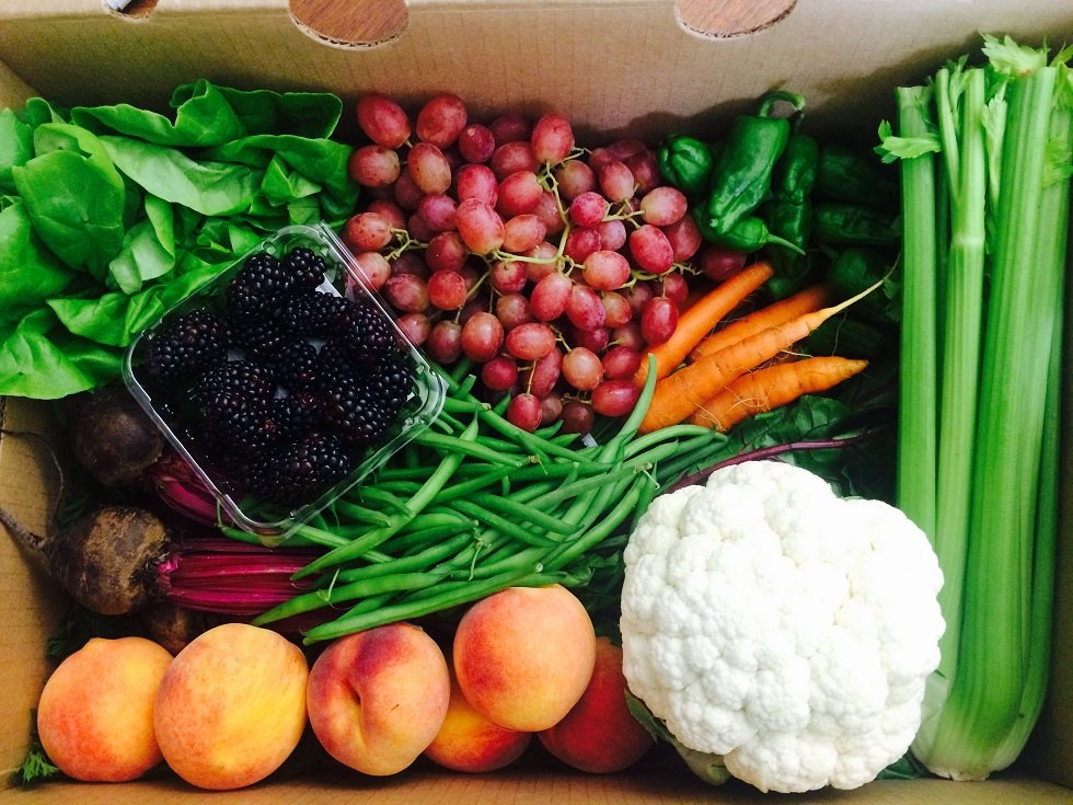 Talley Farms Fresh Harvest: 2900 Lopez Dr, Arroyo Grande, CA