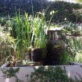 Peace Awareness Labyrinth Gardens 387 Photos 73 Reviews Meditation Centers 3500 W