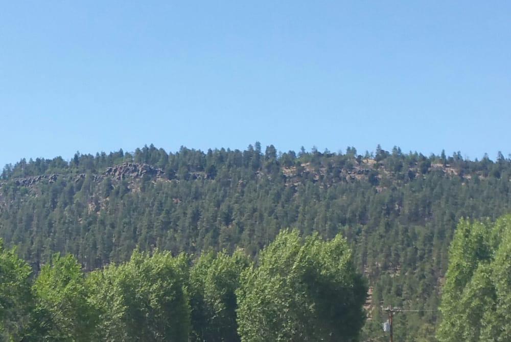 Town of Alpine: Alpine, AZ