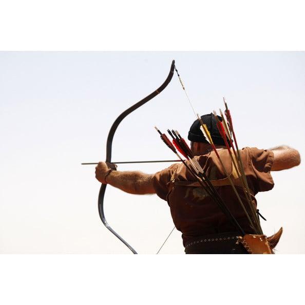 Treestand Archery Pro Shop: 5500 S Limit Ave, Sedalia, MO