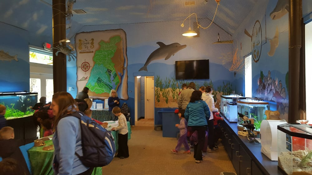 Glen Echo Park Aquarium: 7300 MacArthur Blvd, Glen Echo, MD