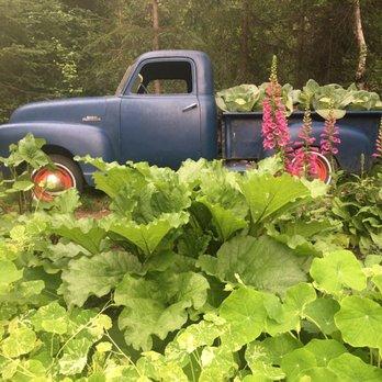 photo of alaska botanical garden anchorage ak united states how cool - Alaska Botanical Garden