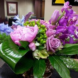 Alamo Plants Amp Petals 14 Photos Amp 10 Reviews Florists