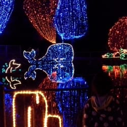 photo of holiday lights at calm bakersfield ca united states