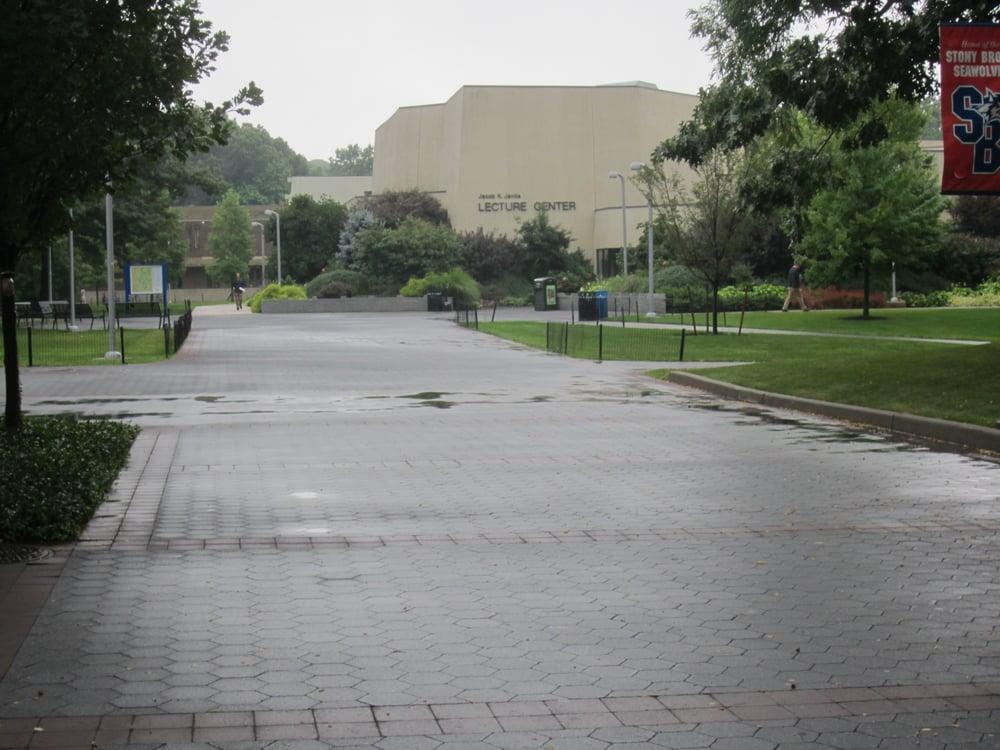 Stony brook university reviews-7548