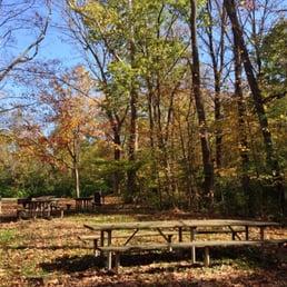 Winton woods 31 fotos y 31 rese as parques y jardines for Winton woods cabins