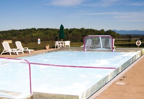 Backyard Ice Hockey Rinks: 25433 Doe Meadow Pl, Elkhart, IN