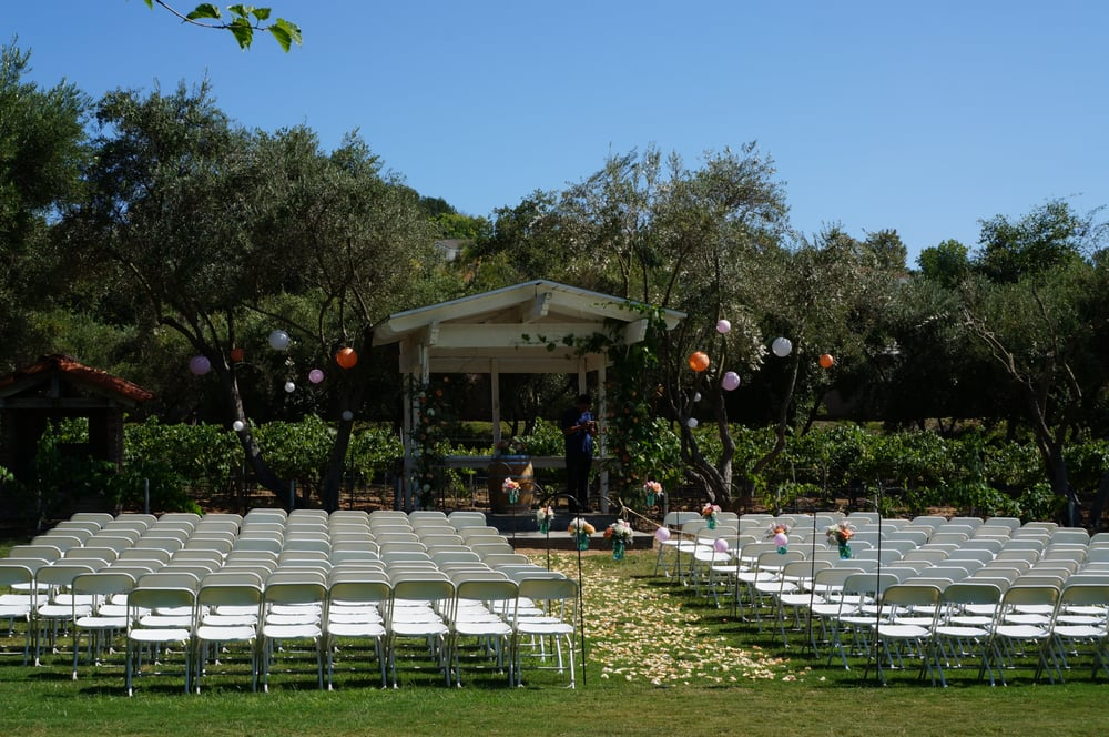 My Wedding Decorations At Vitos Park Grape Vines And Grass Was Very