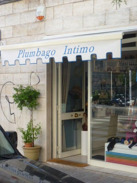 Plumbago Intimo