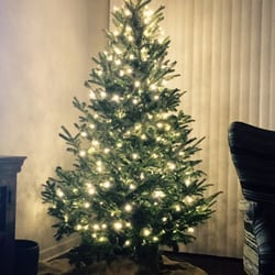 photo of montana fresh christmas trees austin tx united states