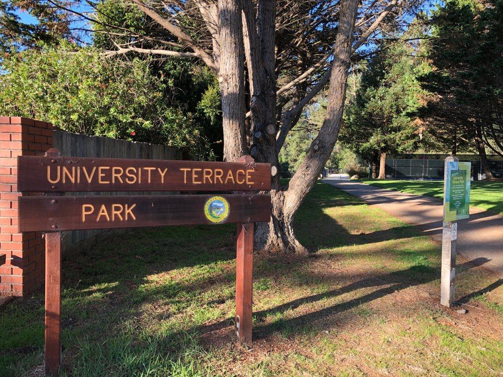 University Terrace