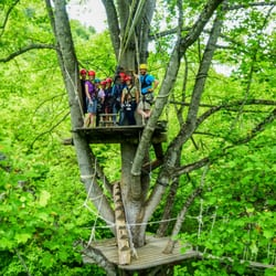 Photo Of Navitat Canopy Adventures