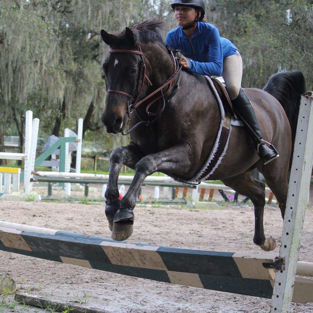 Brookmore Farms: 1130 Bella Lago Cv, Winter Park, FL