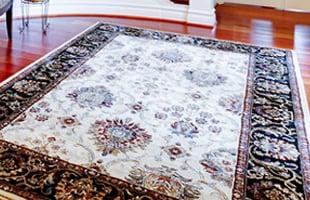 Travis' Professional Carpet & Upholstery Cleaning: 102 Westchester Cir, Dublin, GA