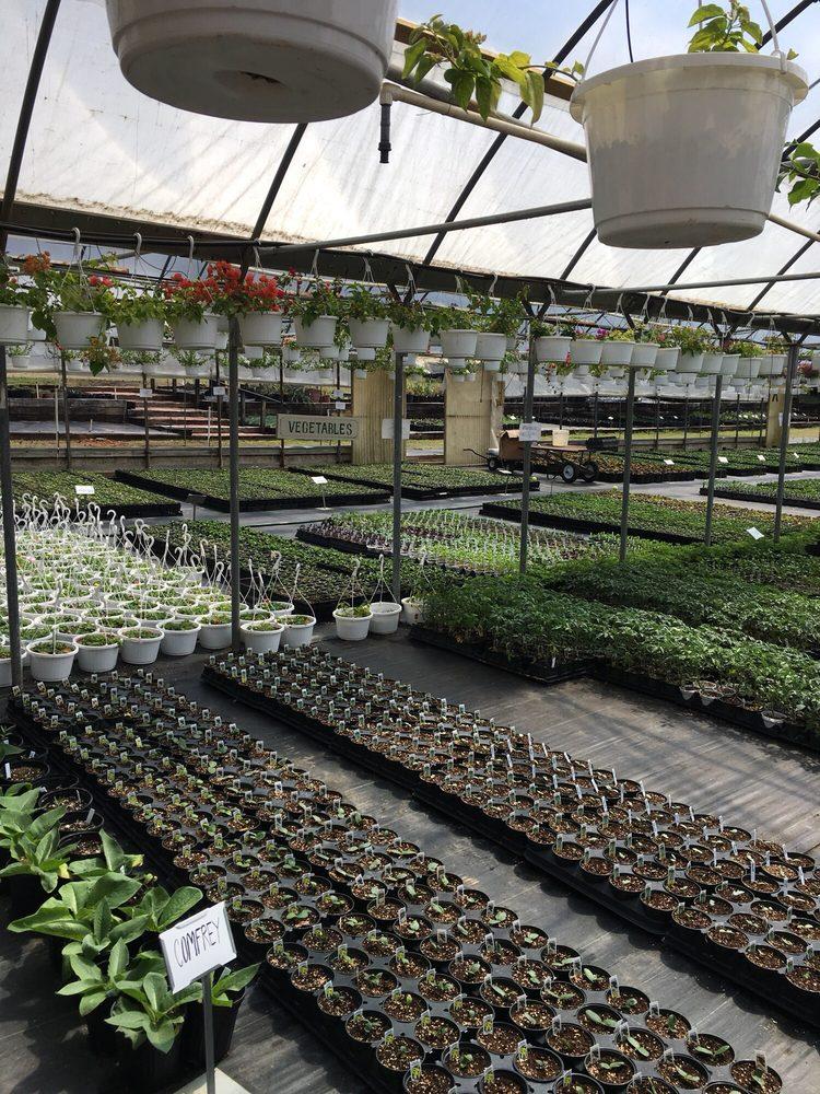 Stegall's Nursery & Plant Farm