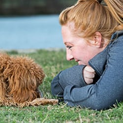 Karma Dog Training Killeen