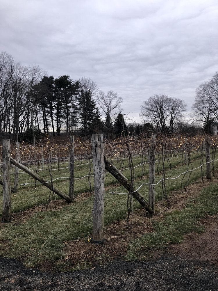 Rose Vineyards and Winery: 2 Valley Rd, North Branford, CT