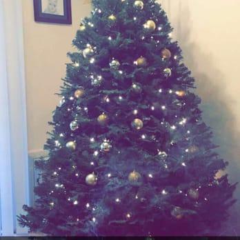 Mr. Jingle's Christmas Trees - Temp. CLOSED - 61 Photos & 85 ...