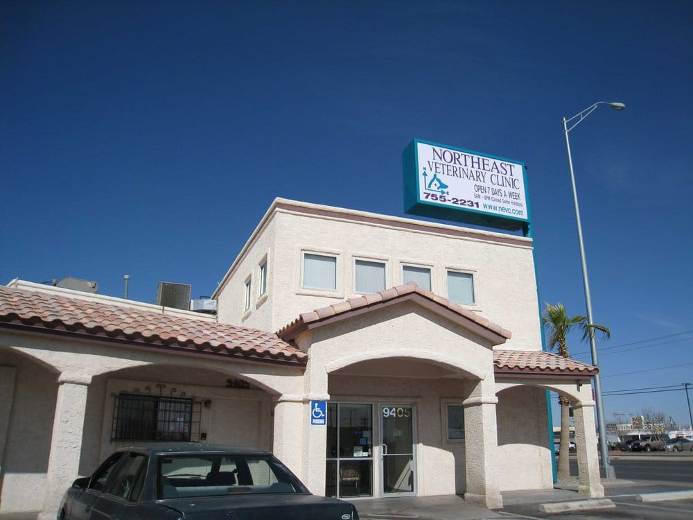 THE BEST 10 Veterinarians in El Paso, TX - Last Updated ...