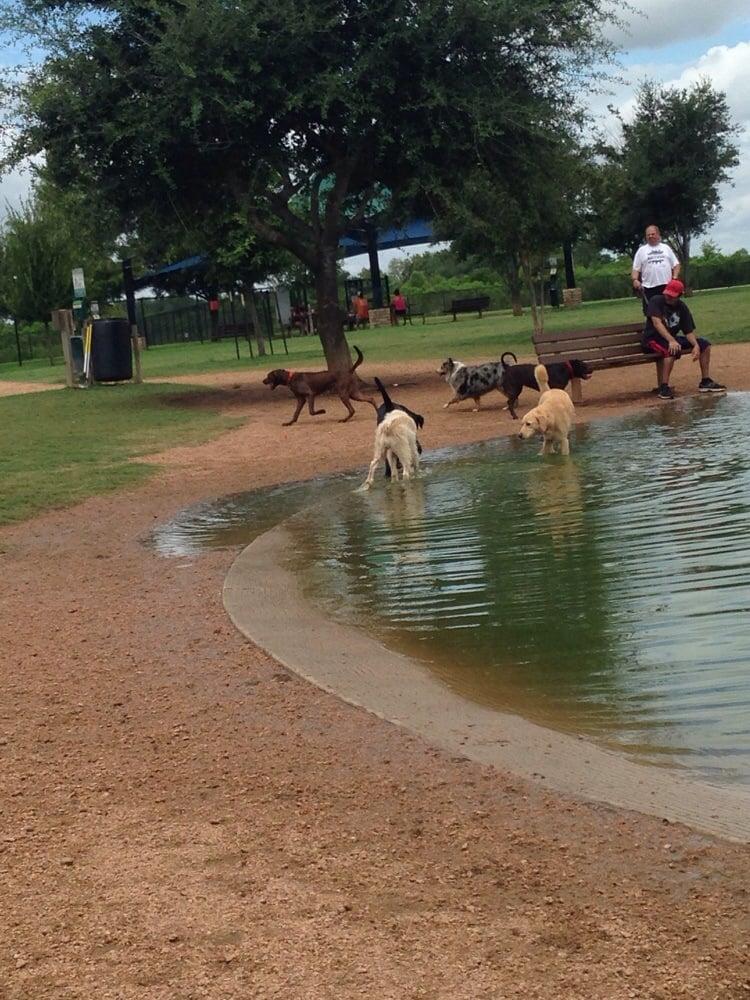 Pawm Springs Dog Park