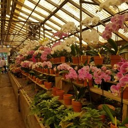 Photo Of Campbell S Greenhouses Charlotte Nc United States