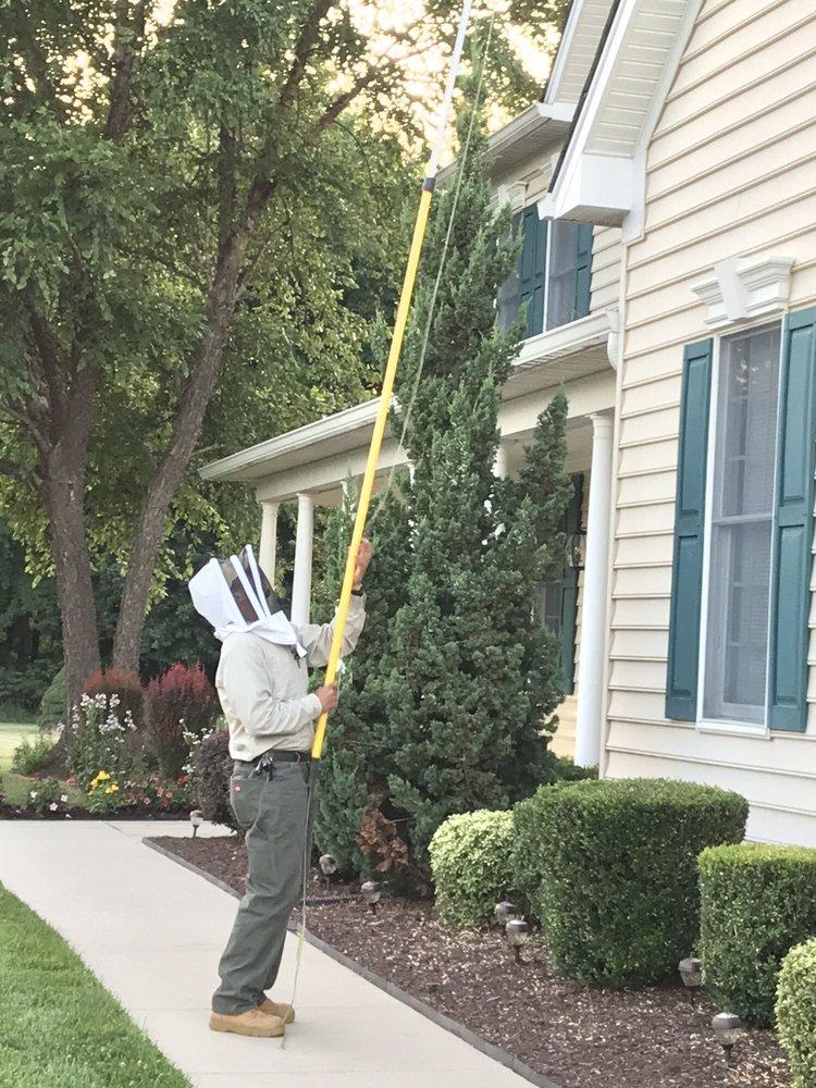 Bee Be Gone: 15225 Rosecroft Rd, Rockville, MD