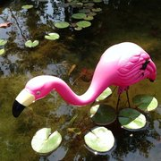 ... Photo Of Smithfield Gardens   Suffolk, VA, United States