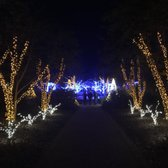 Photo Of Daniel Stowe Botanical Garden   Belmont, NC, United States.  Holiday Lights
