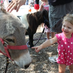 Honey Hill Farm Mobile Petting Zoo and Pony Rides Get Quote