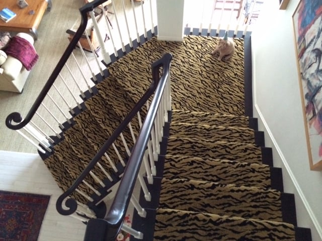 Animal Print Wall To Wall Carpet On Stairs For A Client In