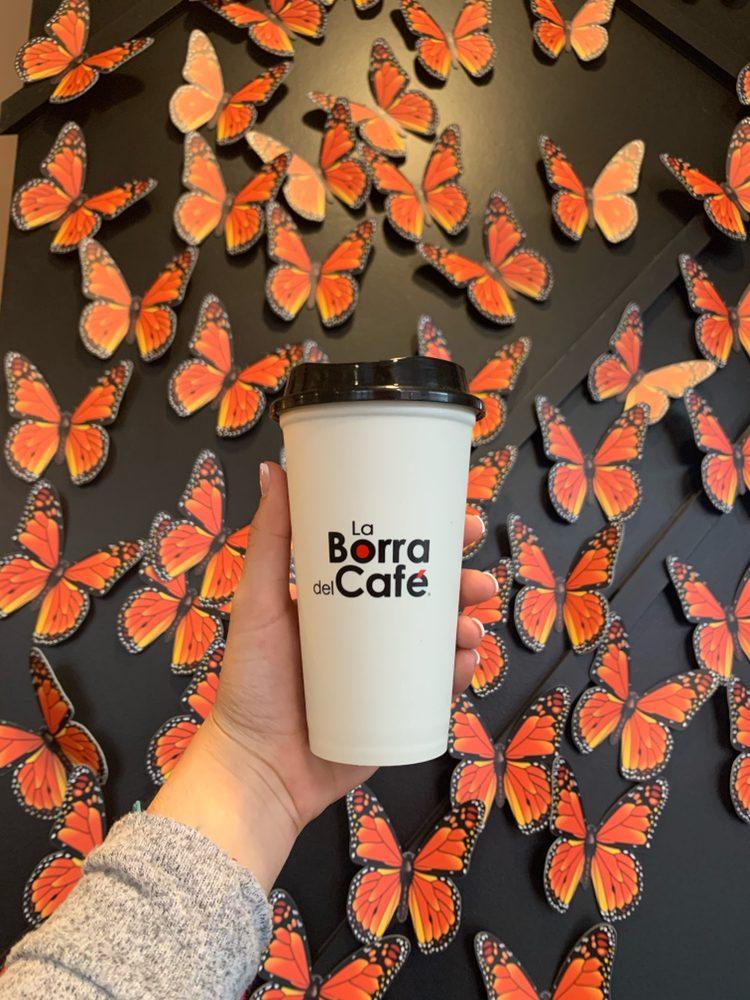 La Borra Del Cafe: 6801 Stanley Ave, Berwyn, IL