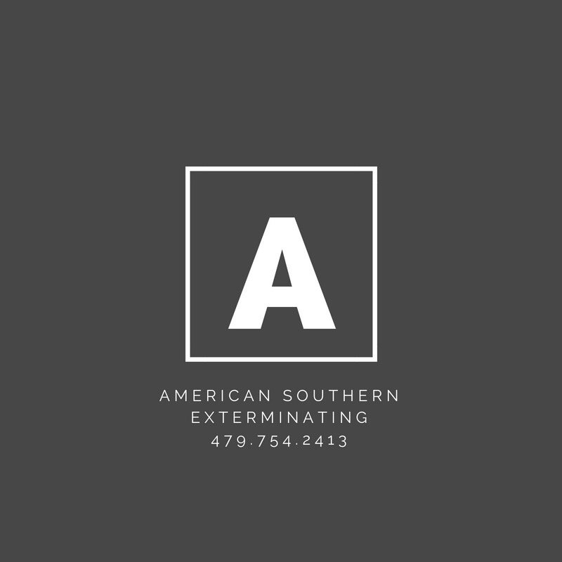 American Southern Exterminating: 1212 W Main St, Clarksville, AR