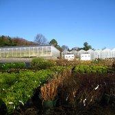 Attrayant Photo Of Cedar Grove Garden Center   Cedar Grove, NJ, United States