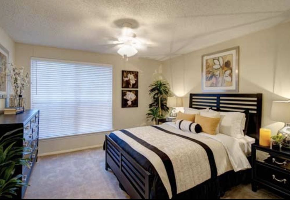 Windfield Townhomes: 5010 Grove West Blvd, Stafford, TX