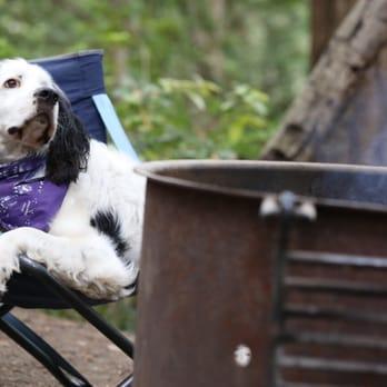 Dog Friendly Pescadero
