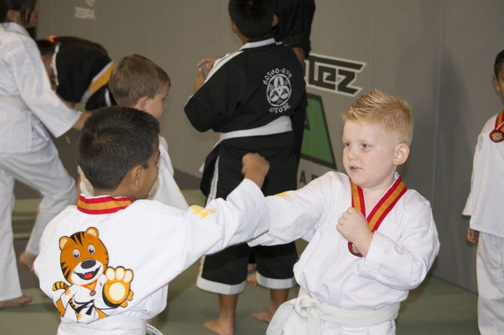 Cortez Martial Arts Academy: 17800 Murphy Pkwy, Lathrop, CA